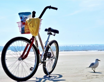 TravNow -Go biking in Charleston, SC