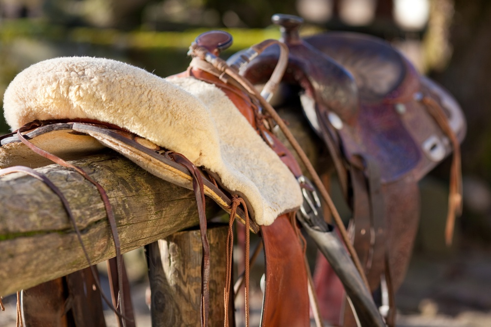 Close-up of a horse saddle on top of a wooden fence of the paddock.jpeg