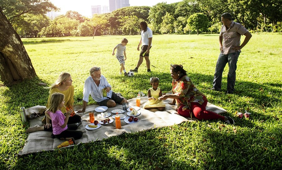 bigstock-Family-Picnic-Outdoors-Togethe-174393805.jpg