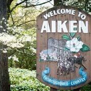 Welcome to Aiken Sign.jpeg
