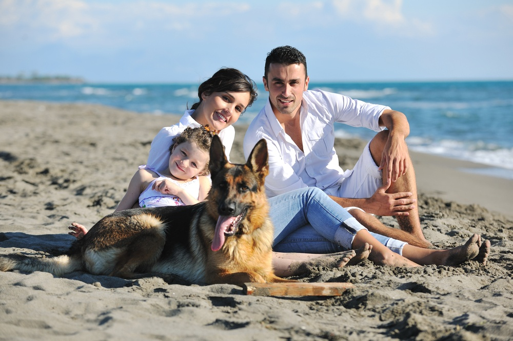 happy young family in white clothing have fun and play with beautiful dog at vacations on beautiful beach-1.jpeg